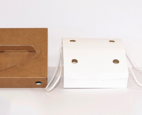 kraft paper carry out boxes
